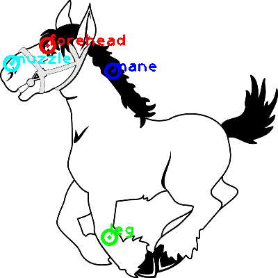 horse_0023_dipart10.png