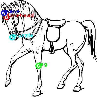 horse_0027_dipart10.png