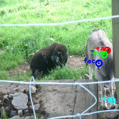 2009_000675-sheep_0_ppm10.png