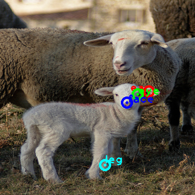 2009_001236-sheep_0_ppm10.png