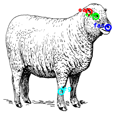 sheep_0005_dipart10.png