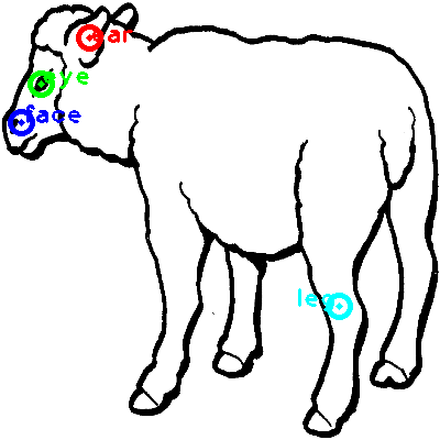 sheep_0013_dipart10.png