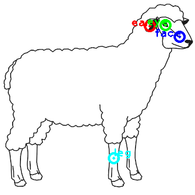 sheep_0016_dipart10.png