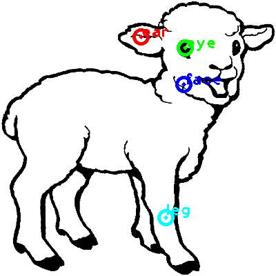 sheep_0028_dipart10.png