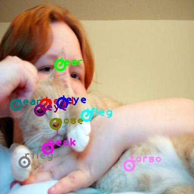 2008_000222-cat_0.png