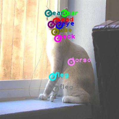 2008_000464-cat_0.png