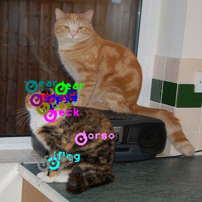 2008_000502-cat_0.png