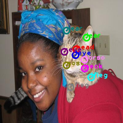 2008_000950-cat_0.png