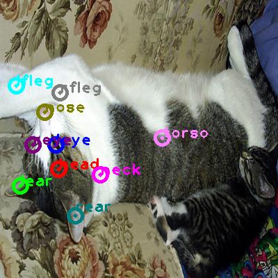 2008_001071-cat_0.png