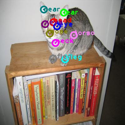 2008_001640-cat_0.png