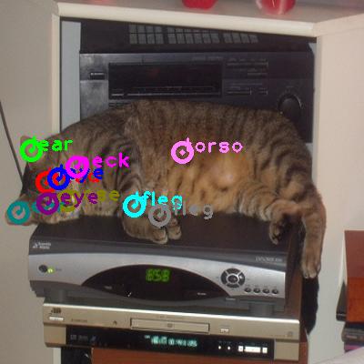 2008_001741-cat_0.png