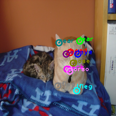 2008_001792-cat_0.png