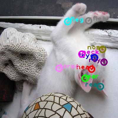 2008_002293-cat_0.png