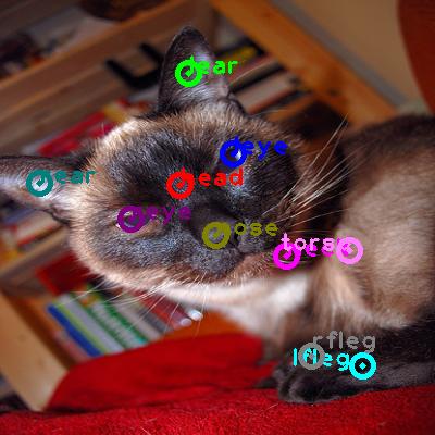 2008_003244-cat_0.png