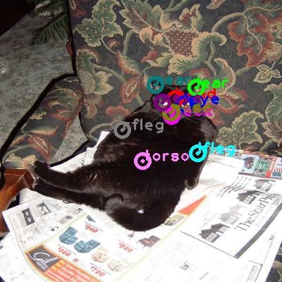 2008_003501-cat_0.png