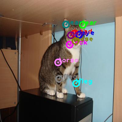 2008_003519-cat_0.png