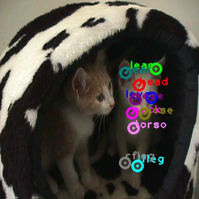 2008_003772-cat_0.png