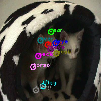 2008_003772-cat_1.png