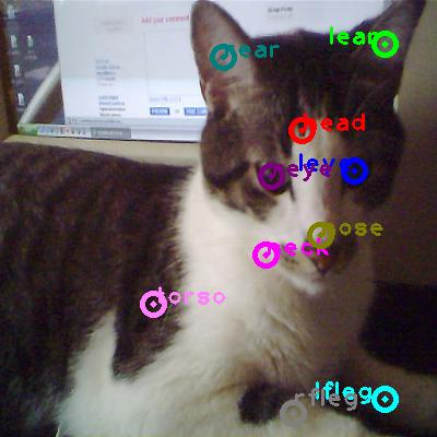 2008_004006-cat_0.png