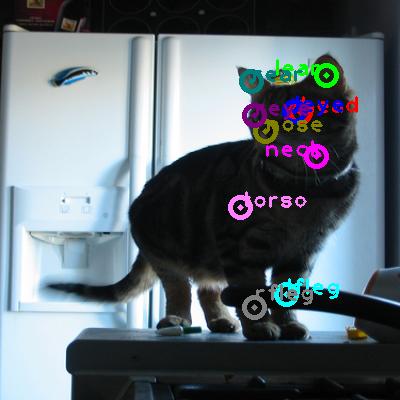 2008_004290-cat_0.png