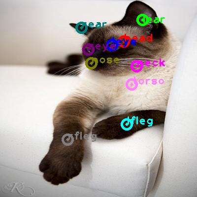 2008_004635-cat_0.png