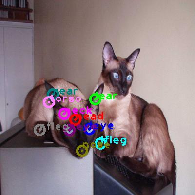 2008_004856-cat_0.png