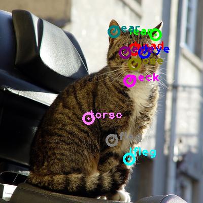 2008_005061-cat_0.png