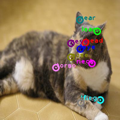 2008_005134-cat_0.png