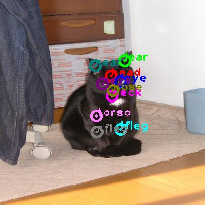 2008_005235-cat_0.png