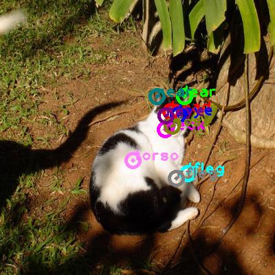 2008_005449-cat_0.png