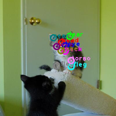 2008_005510-cat_0.png