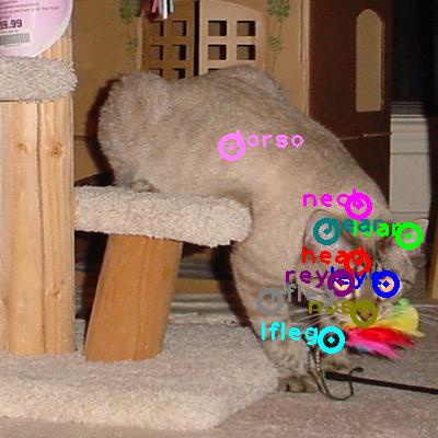 2008_005657-cat_0.png