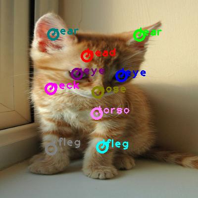 2008_005735-cat_0.png