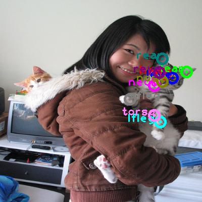 2008_006135-cat_0.png