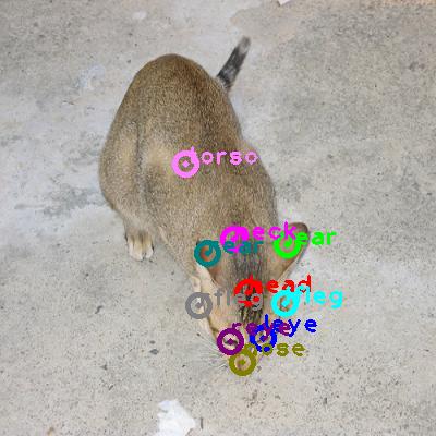2008_006218-cat_0.png