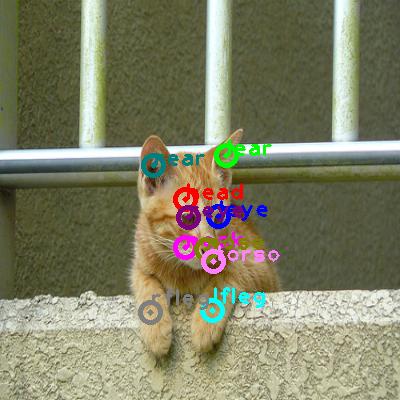 2008_006280-cat_0.png