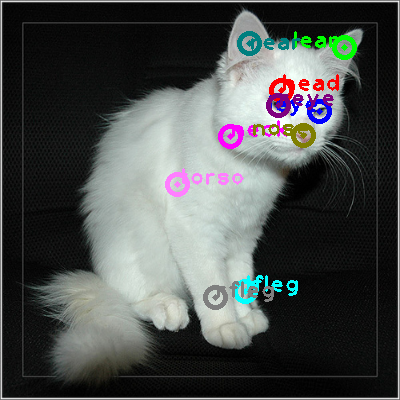 2008_006325-cat_0.png