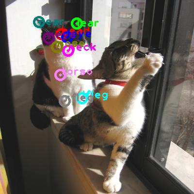 2008_006329-cat_0.png