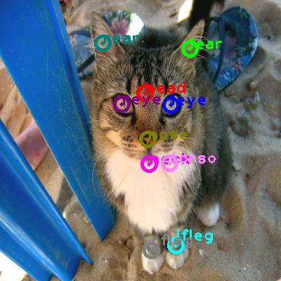2008_006999-cat_0.png