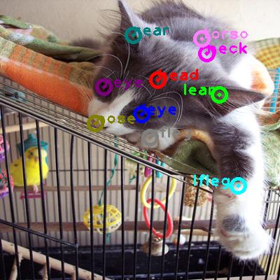 2008_007327-cat_0.png