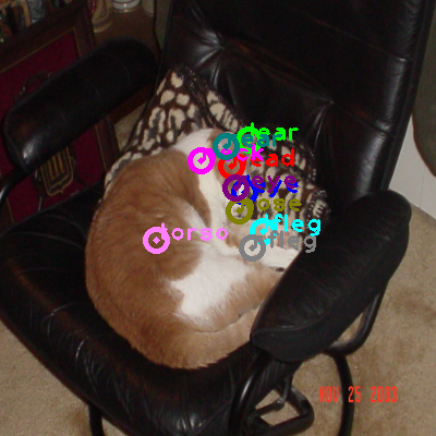 2008_007363-cat_0.png