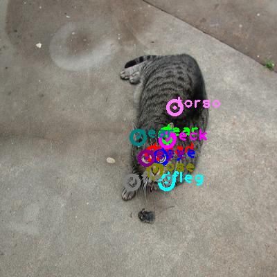 2008_007842-cat_0.png