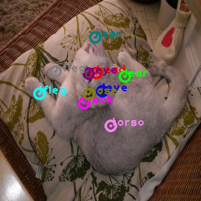 2009_000716-cat_0.png