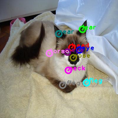 2009_000854-cat_0.png
