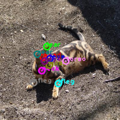 2009_000862-cat_0.png