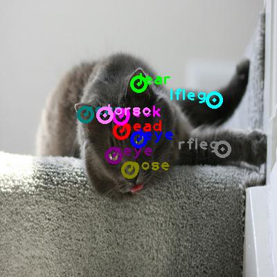 2009_001037-cat_0.png