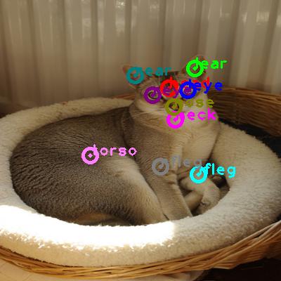 2009_001391-cat_0.png