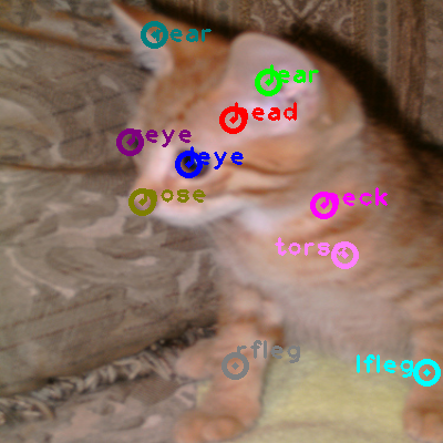 2009_001835-cat_0.png