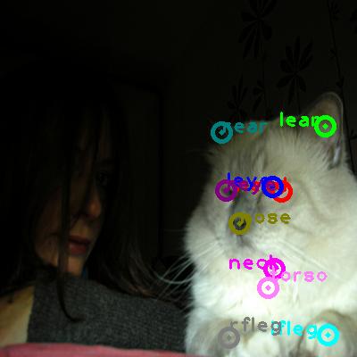 2009_002439-cat_0.png