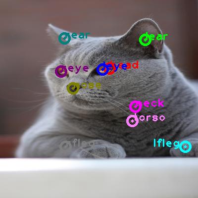 2009_003201-cat_0.png